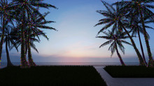 Palm Trees Decorated With Chri...