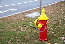 Colourful Fire Hydrant Along A...