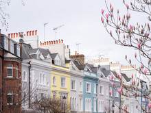 Early Spring In Notting Hill