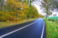 Asphalt Road In A Autumn Nature Colors . ( Munkholmvej  -  Holbaek  / Denmark )