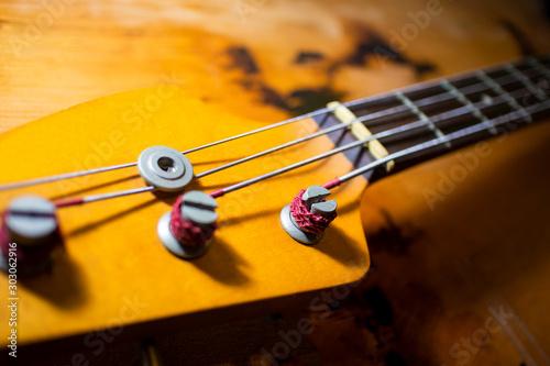Bass Guitar Head_3614 Wallpaper Mural