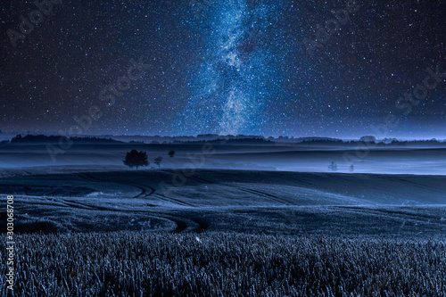 Foto auf AluDibond Blaue Nacht Milky way over filed with one tree at night