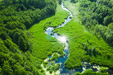 Small Winding River And Green ...