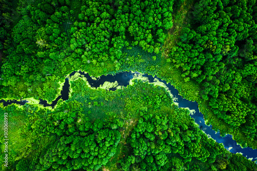 Amazing blooming algae on green river, aerial view - 303068993