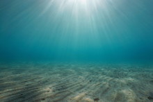 Sand Underwater On The Seabed With Sunlight, Natural Scene, Mediterranean Sea