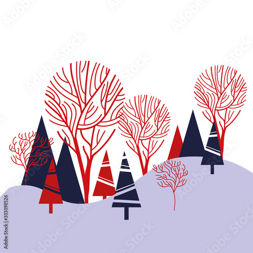 pines trees forest winter scene