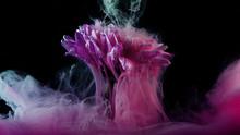Flower Under Water And Splashe...