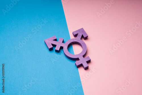 Obraz Transsexual Symbol Over Dual Backdrop - fototapety do salonu