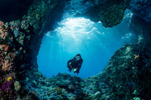 Woman Diver Underwater At The ...