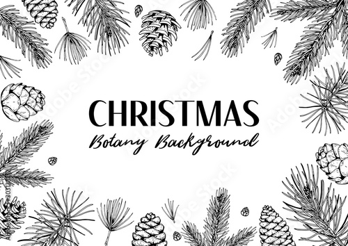 Fotografiet  Hand drawn horizontal Christmas and New Year design with fir tree and pine tree branches and cones