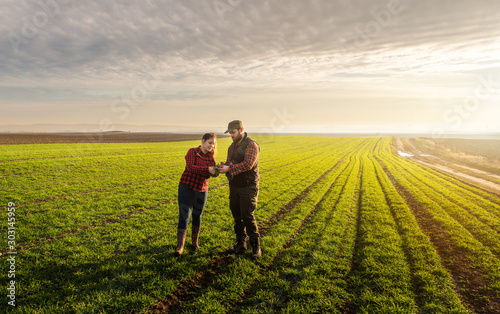 Young farmers examing  planted wheat Fototapete