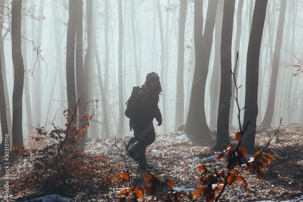 Fototapety, obrazy: Misty forest with dense fog.
