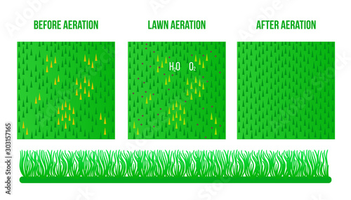 Top view Lawn Aeration Canvas-taulu