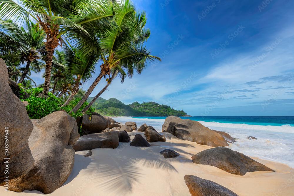 Fototapeta Tropical exotic beach and coconut palms