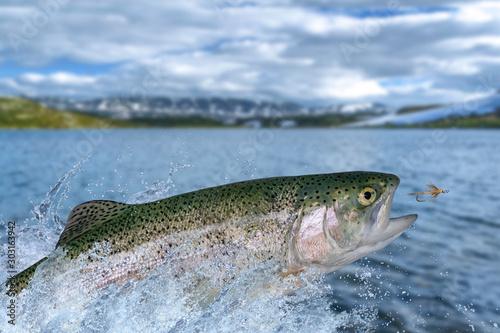 Fly fishing Fototapeta