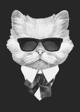 Portrait Of Persian Cat In Suit. Hand-drawn Illustration. Vector Isolated Elements.