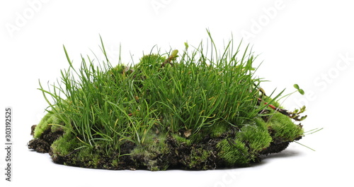 Green grass on soil, dirt pile with moss isolated on white background