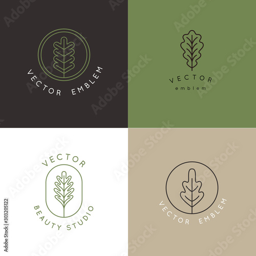 Fotografie, Tablou Vector logo design template with oak leaf - abstract emblem and symbol