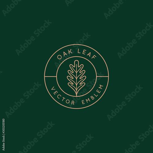 Carta da parati Vector logo design template with oak leaf - abstract emblem and symbol
