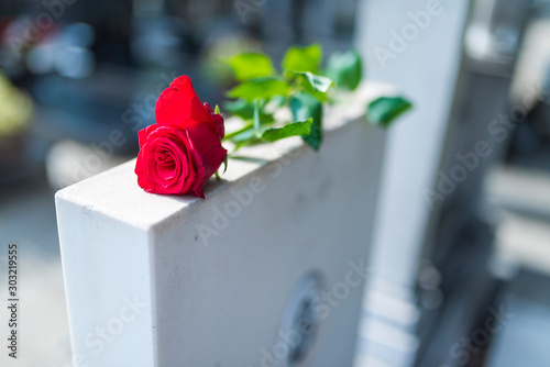 Leinwand Poster  Religious tradition to put one flower in memory of the deceased on the granite s
