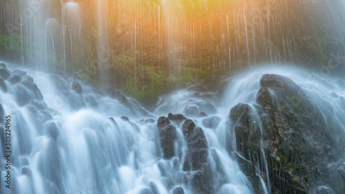 Garden Poster Forest river Panoramic beautiful deep forest waterfall
