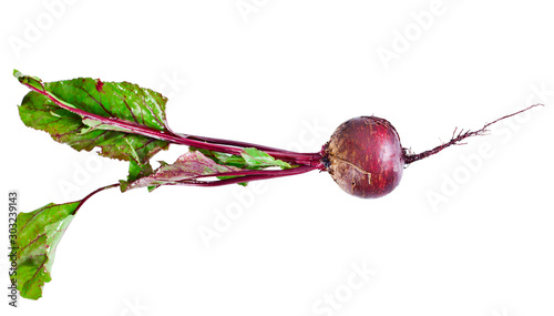 Fototapeta  Fresh red beet or beetroot isolated on a white background.