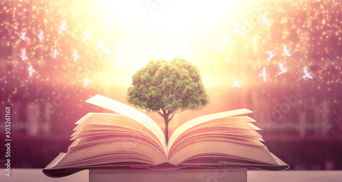 Foto The blurred book that is bewitched with magic, the magic light in the dark, with the bright light shining down as the power to search for knowledge