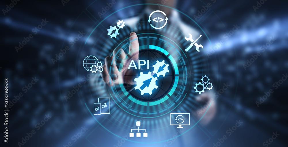 Fototapeta API Application Programming Interface Development technology concept.