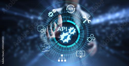 API Application Programming Interface Development technology concept Canvas Print