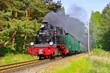 canvas print picture - Ruegen Dampflock Rasender Roland- island Ruegen, old steam locomotive