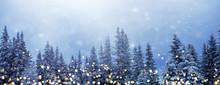 Weihnachtswald-Banner, Hinterg...