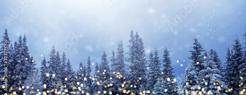 Obraz Weihnachtswald-Banner, Hintergrund für Weihnachten und Neujahr mit goldenen Lichtern vor verschneitem Tannenwald und viel Textfreiraum - fototapety do salonu
