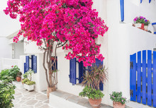 Traditional Greek House With F...
