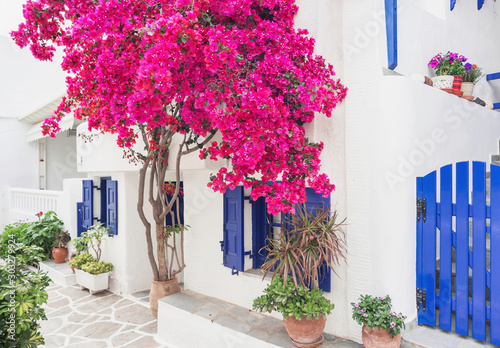 Traditional greek house with flowers in Paros island, Cyclades, Greece Fototapete