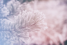 Dreamlike Beautiful Snow-cover...