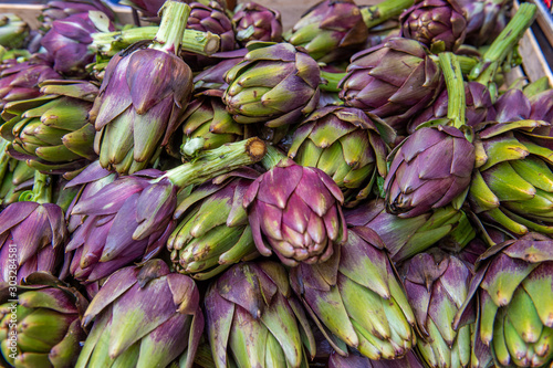 Pile of artichoke Canvas Print