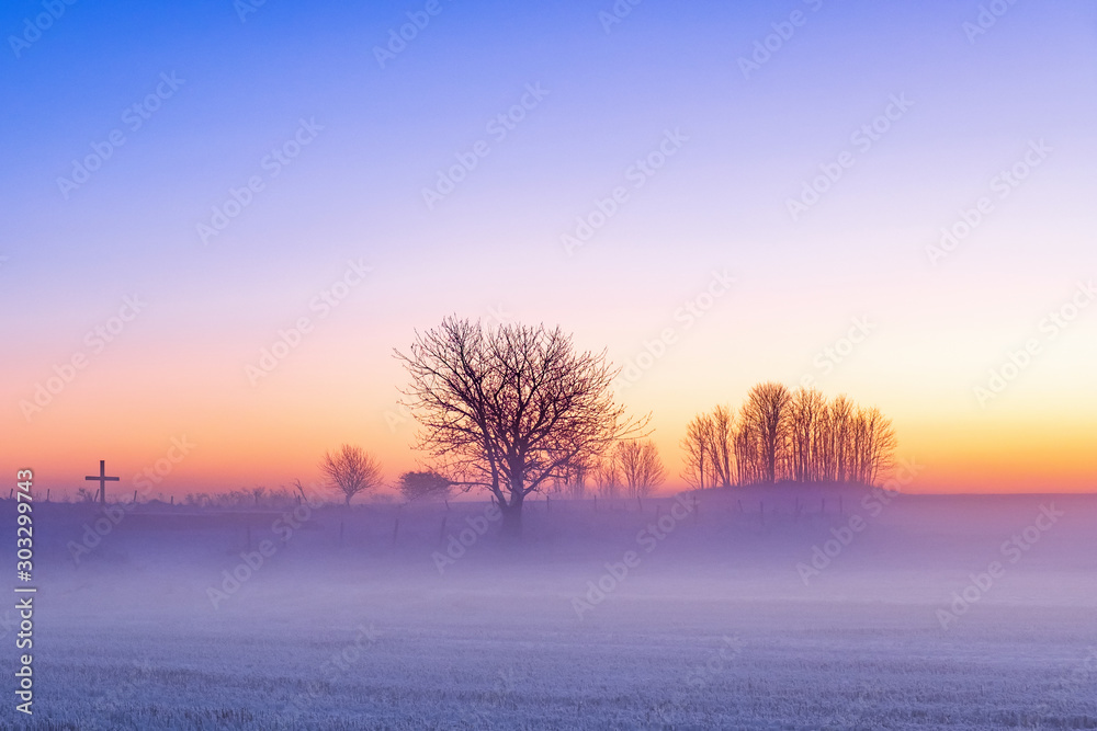 Fototapeta Cold mist in sunset in the winter country