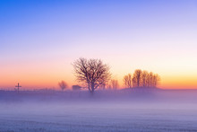 Cold Mist In Sunset In The Win...