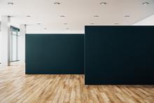Clean Gallery Interior