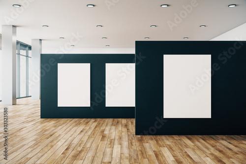 Fotografie, Obraz Contemporary gallery interior with banner