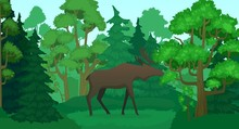 Cartoon Moose In Forest Landsc...