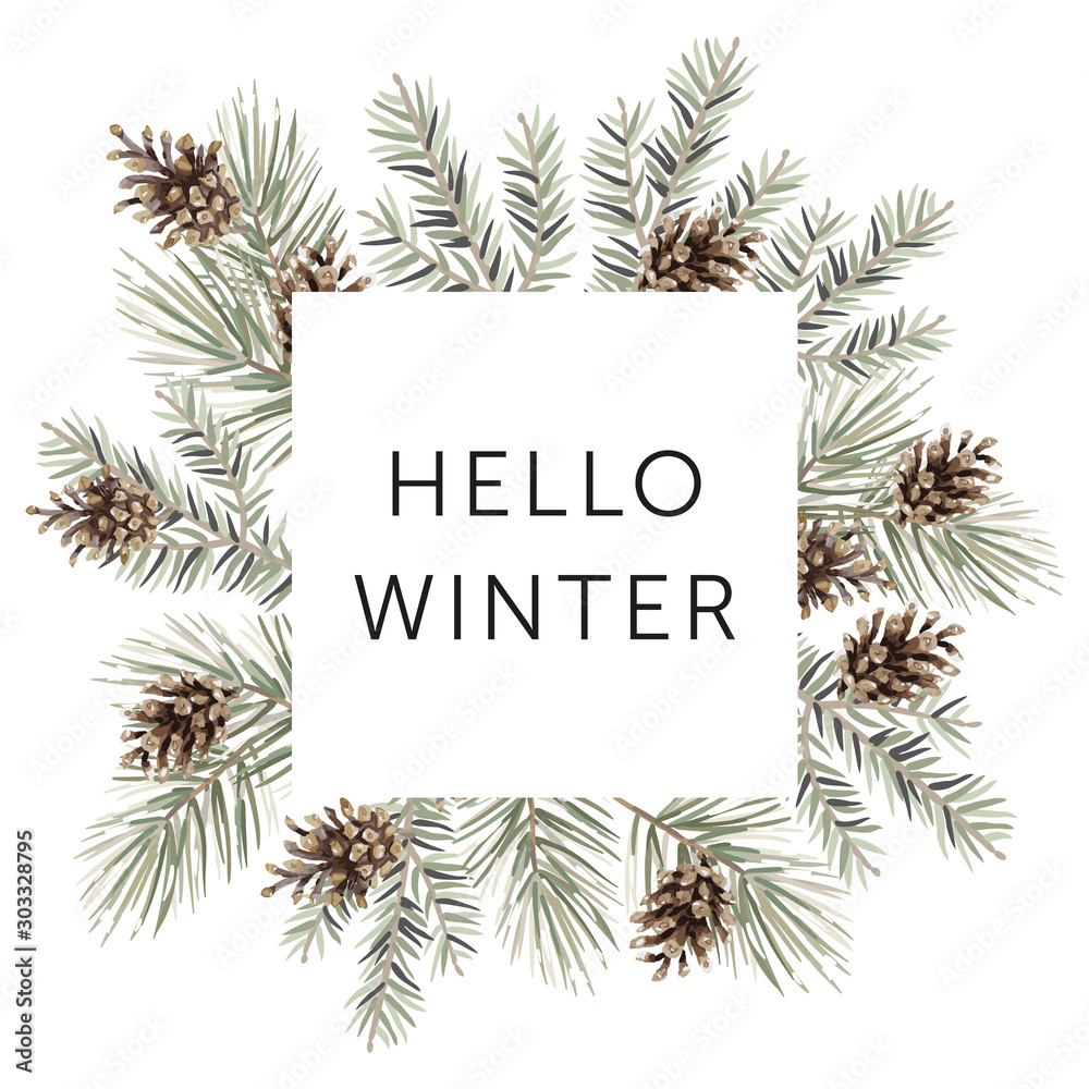 Fototapety, obrazy: Christmas nature design square frame, text Hello Winter, white background. Green pine, fir twigs, cones. Vector illustration. Greeting card, poster template. Xmas holidays