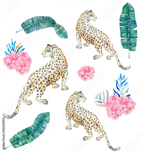Beautiful cheetah and tropical leaves with watercolor illustration on isolated background. African animal, colorful clip art. Jungle set and pink flowers Wall mural