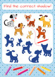 Find the correct shadow! Dogs of different breeds. Educational mini-game for children. Cartoon vector illustration