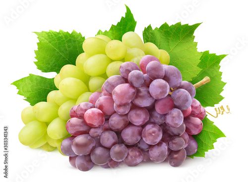Fotografiet  Isolated grape varieties