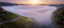 Foggy Sunrise At The Mosel Val...