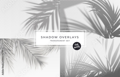 Obraz Set of shadow background overlays. Realistic Shadow mock up scenes. Transparent shadow of tropical leaves. Vector illustration - fototapety do salonu