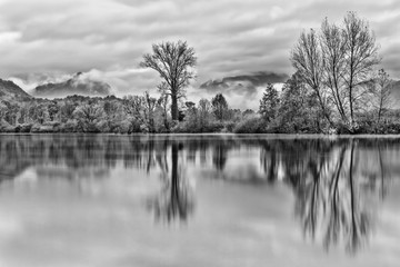Autumn landscape, black and white photography