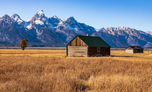 Old Cabin In Open Field With Grand Teton Mountains