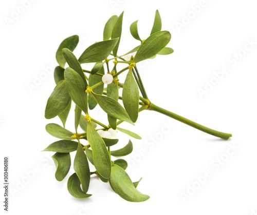 Obraz na plátně Mistletoe with berries.